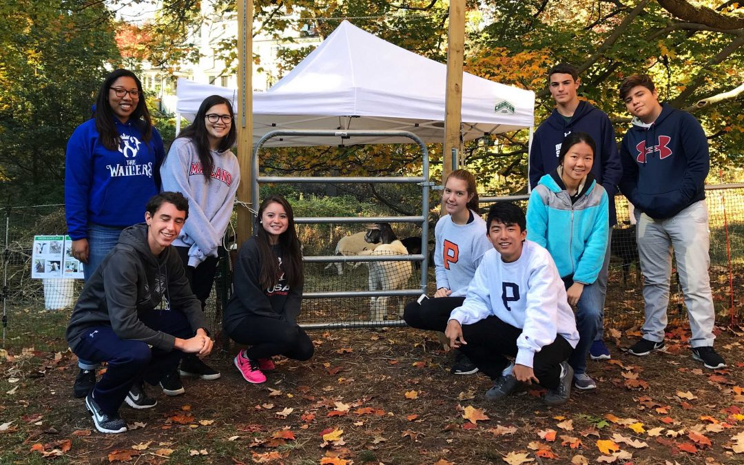 "Students Give Back on Community Service ""Rufus Gunther"" Day"