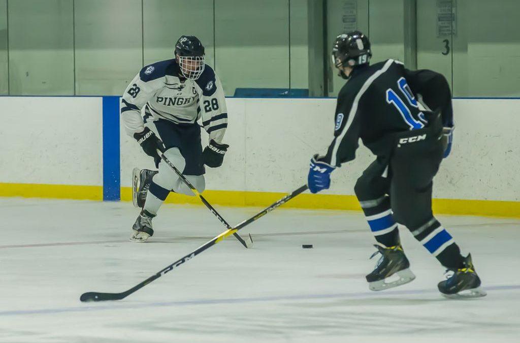 Boys' Ice Hockey Post-Season Update 2019